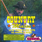 Country Males by Nashville Session Singers