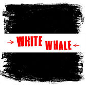 No Solace by White Whale