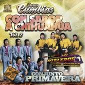 Puras Cumbias Con Sabor a Chihuahua, Vol. 2 de Various Artists