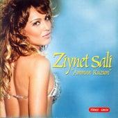 Amman Kuzum von Ziynet Sali