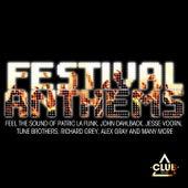 Festival Anthems von Various Artists