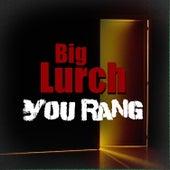 You Rang von Big Lurch
