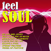 Feel Soul de Various Artists