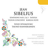 Jean Sibelius (Favourite Works) by Various Artists