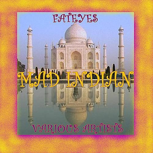 Mad Indian by Various Artists