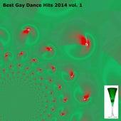 Best Gay Dance Hits 2014, Vol. 1 (69 Exclusive House Songs for Men) de Various Artists