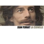 La Cervelle de Jean Ferrat