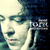 The David Torn Collection by Various Artists