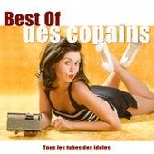 Best of des copains (Tous les tubes des idoles) von Various Artists