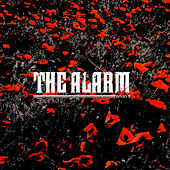 In The Poppy Fields by The Alarm