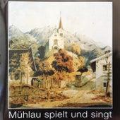 Mühlau spielt und singt van Various Artists