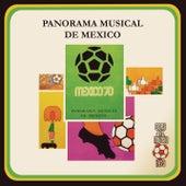Panorama Musical de México de Various Artists
