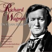 Richard Wagner, the Opera Master (Bicentenario, Bicentenary, Bicentenaire, Zweihundertjahrfeier, двухсотлетие) by Various Artists