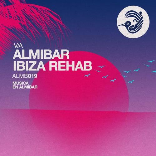 Ibiza Rehab by Various Artists