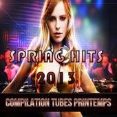Spring Hits 2013 (Compilation Printemps) von Various Artists