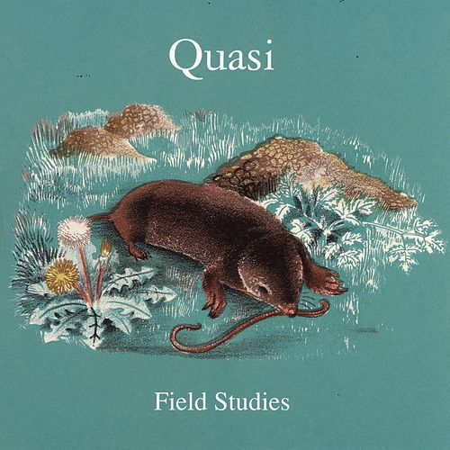 Field Studies by Quasi