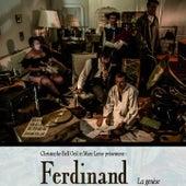 Connaissez-vous Ferdinand ? by Ferdinand