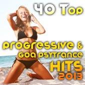 40 Top Progressive & Goa Psytrance Hits 2013 (Best of Tech House, Acid House, Tech Trance, Morning) by Various Artists