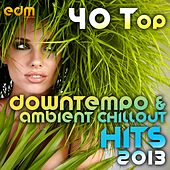 40 Top Downtempo & Ambient Chillout Hits 2013 (Best Of Psybient, Lounge, World, TripHop, Dub & Bass) by Various Artists