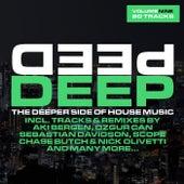 Deep, Vol. 9 - The Deeper Side of House Music de Various Artists