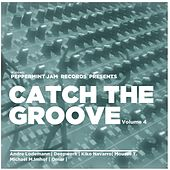 Catch the Groove, Vol. 4 von Various Artists