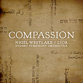 Compassion by Lior