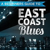 A Beginners Guide to: East Coast Blues by Various Artists