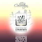 Redux Recordings Collection Autumn Edition 2013 - EP by Various Artists