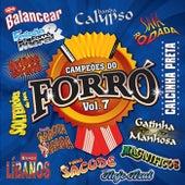 Campeões do Forró, Vol. 07 de Various Artists