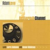 Buttermilk Channel de Adam Levy