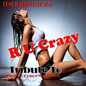Tribute to Birdy, Conor Maynard: R U Crazy (Compilation Hits 2014) de Various Artists