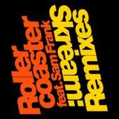 Rollercoaster (Remixes) de Skream