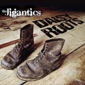 Daisy Roots by The Jigantics