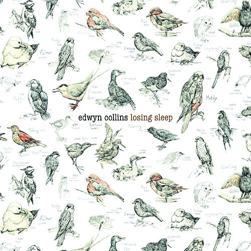Losing Sleep by Edwyn Collins