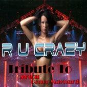 R U Crazy: Tribute to Avicii, Conor Maynard de Various Artists