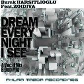 Dream Every Night I See (feat. ZoiDiva) by Burak Harsitlioglu