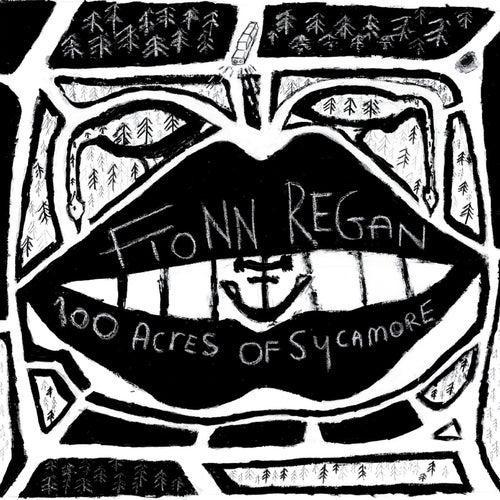 100 Acres Of Sycamore de Fionn Regan