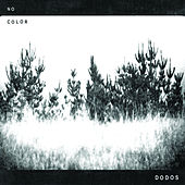 No Color by The Dodos
