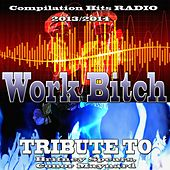 Work Bitch: Tribute to Britney Spears, Conor Maynard (Compilation Hits Radio 2013/2014) de Various Artists