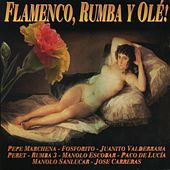Flamenco, Rumba y Olé de Various Artists