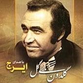 Goldoon Bi Gol (Persian Music) by Iraj