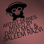 Housepital Artist Series, Vol. 9 Mixed By David Mel & Saleem Razvi de Various Artists