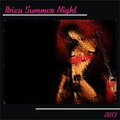 Ibiza Summer Night 2013 (30 Top Hits Dance Essential Djs) by Various Artists