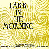 Lark in the Morning - Folk Songs and Dances from the Irish Countryside (Collected By Diane Hamilton) by Various Artists