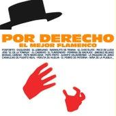 Por Derecho el Mejor Flamenco de Various Artists