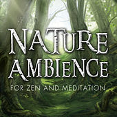 Nature Ambience for Zen and Meditation - Stress Free Relaxation Patience & Creativity by Nature Ambience