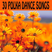 30 Polka Dance Songs by The O'Neill Brothers Group