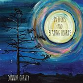Meteors and Beating Hearts by Connor Garvey