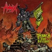 Thrash and Destroy (Main Concert - Dittigheim, Germany) de Hirax
