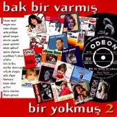 Bak Bir Varmış Bir Yokmuş, Vol. 2 by Various Artists